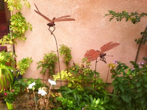la libelule et le papillon